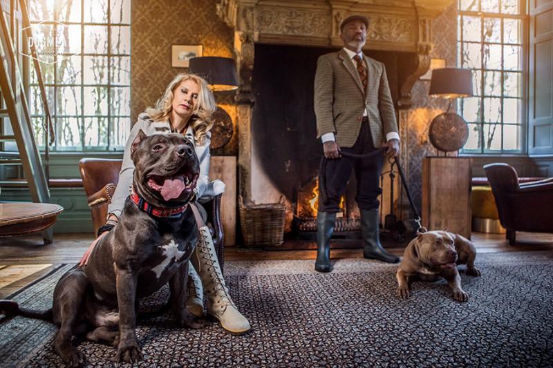 dogmeat-5-dieren-balans