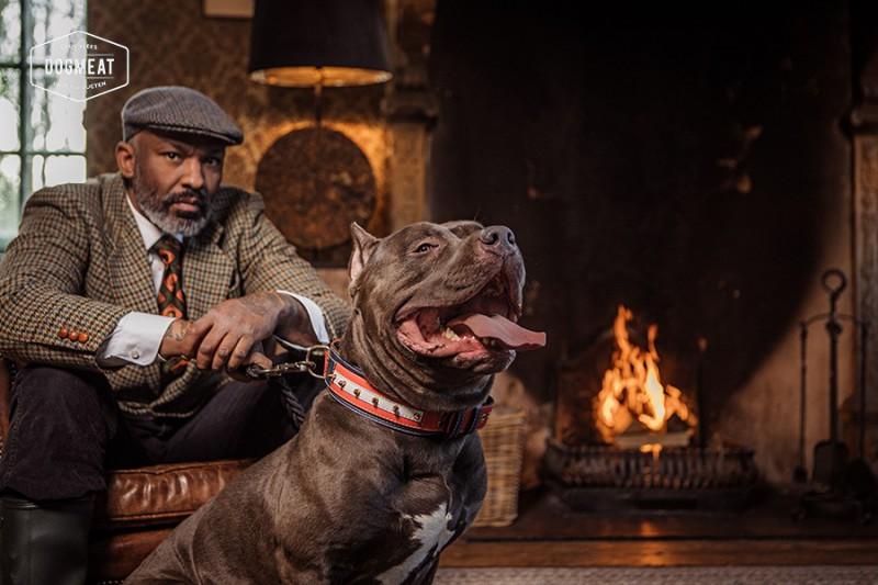 dogmeat-5-dieren-basis