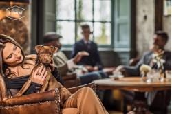 dogmeat-Turquie-Cheval