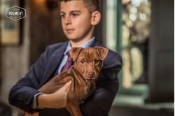 dogmeat-puppy-1-6 maanden
